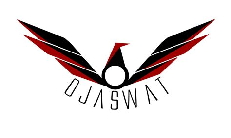 design logo racing team pd2 design darshan paladiya indian graphic designer