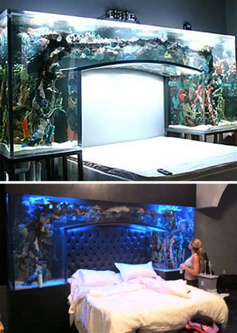 aquarium bed holy water 24 amazing aquariums and clever fish tanks