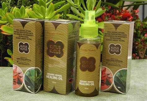 Minyak Kutus Kutus Di Bali minyak kutus kutus bali asli harga testimoni dan