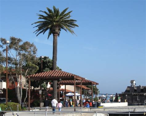 along with the gods in san diego beautiful stroll along san diego bay tourguidetim