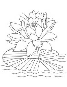 Lotus Flower Color Free Printable Lotus Coloring Pages For
