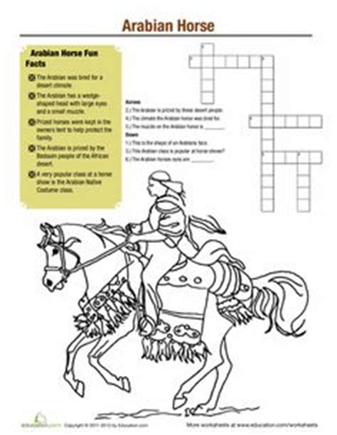 horse color pattern crossword free horse unit study resources coloring creative and