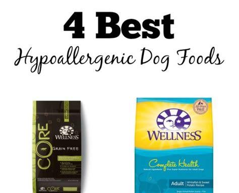 best hypoallergenic food 4 best hypoallergenic foods dogvills