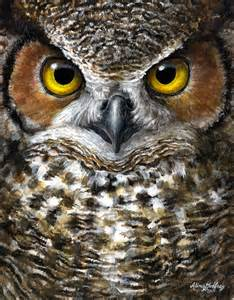 owl painting galleryhip com the hippest galleries