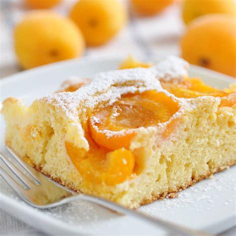 aprikosen quark kuchen aprikosen quark kuchen vom blech rezepte zum kochen