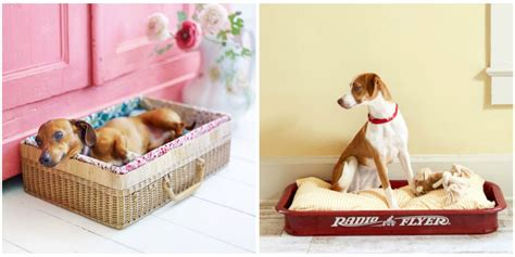 cheap n easy dog bed diy 14 adorable diy dog bed cheap pet beds