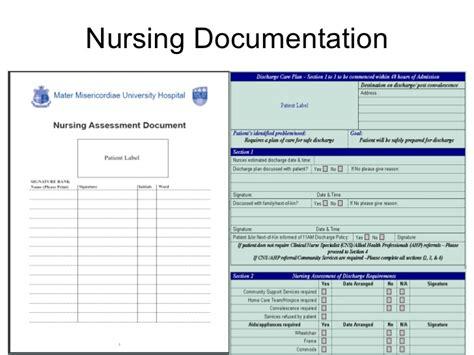 nursing clinical informatics suzanne brown