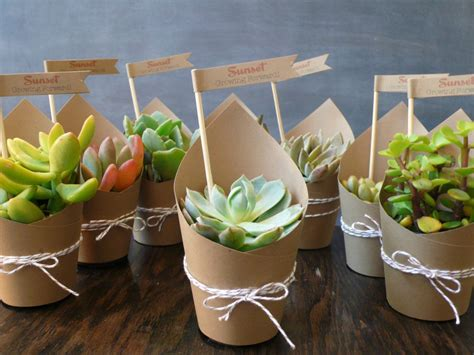 Wedding Gift Plant by 12 Ultimate Great Ideas For Lovely Plant Wedding Favors