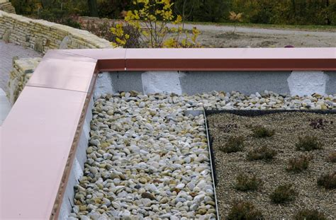 green roofing options buildipedia
