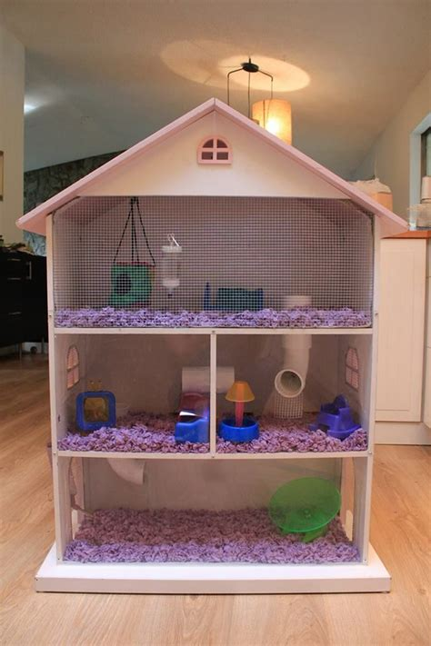 hamster house 25 best ideas about hedgehog cage on pinterest hedgehog pet cage hedgehog pet and