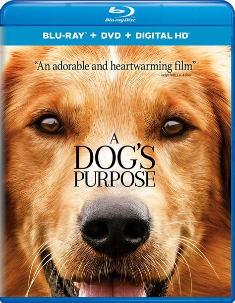 imdb a s purpose a s purpose dvd release date may 2 2017