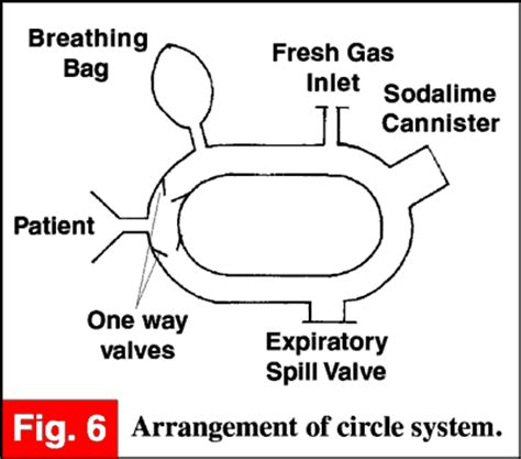 circle system anaesthesia