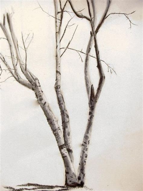 birch tree tattoo birch tree ideas tattoos