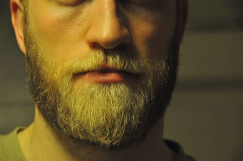 viking beards styles master s beard a look at 2009 first full beard victory in