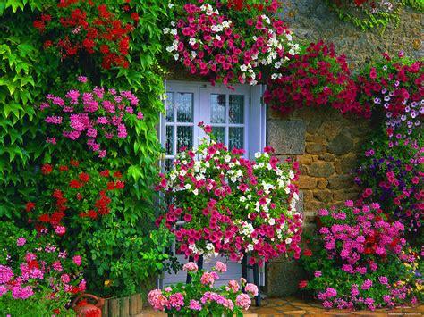 the flower cottage la portada canad 225 aliste su jard 237 n para dar vida y color