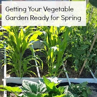 getting ready for spring getting your vegetable garden ready for spring