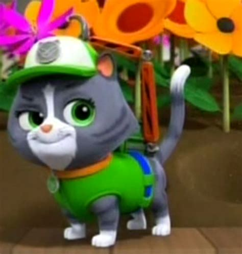 cat rocky paw patrol wiki fandom powered by wikia