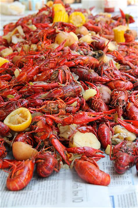 how to boil a how to boil crawfish the complete guide 30aeats