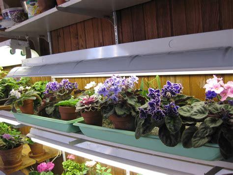 Gardening Under Lights   garden.xcyyxh.com