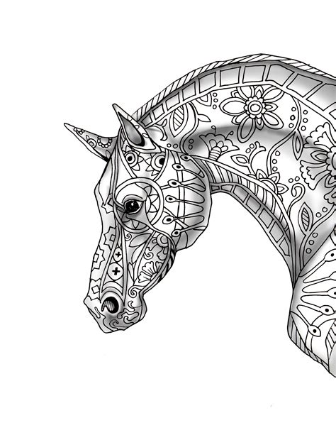 coloring page of a horseshoe 1000 images about animals on pinterest squirrel black