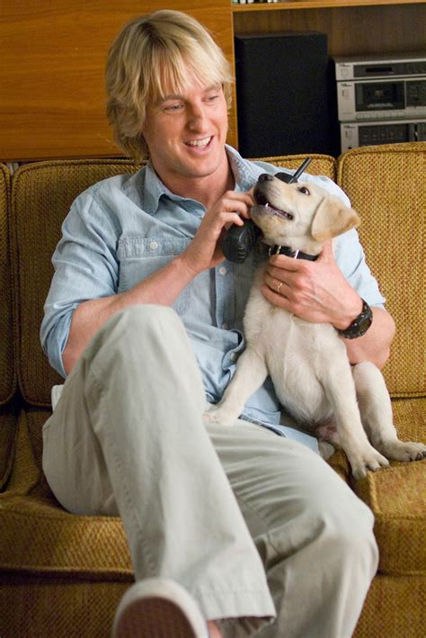 marley and me marley and me 2008 images marley me hd wallpaper and background photos 6104819