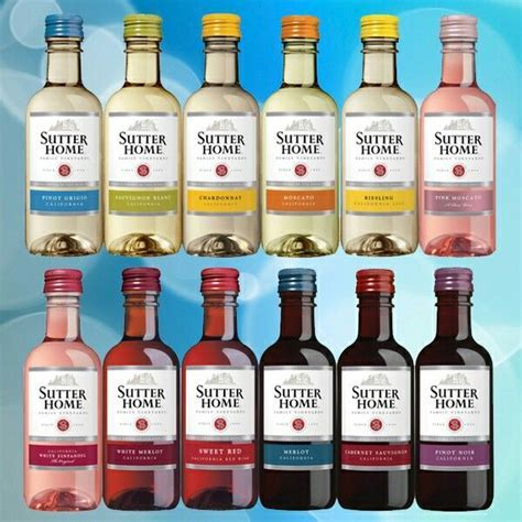 Best 25  Mini alcohol bottles ideas on Pinterest   Alcohol