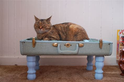 Handmade Cat Beds - handmade cat bed ideas diy pet furniture