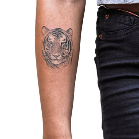 small tiger tattoo small tiger by sameoldkid on deviantart