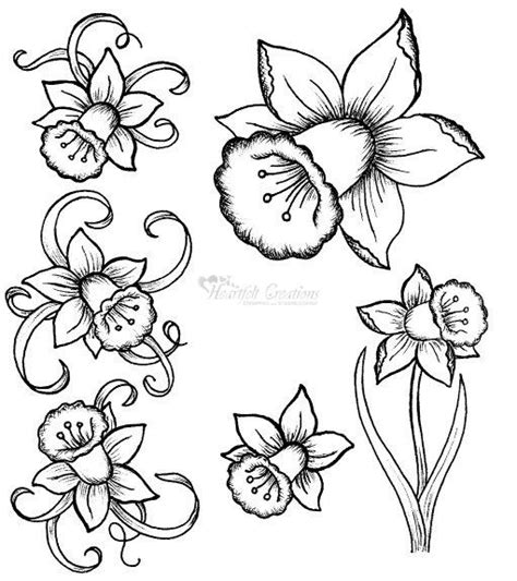 narcissus flower tattoo designs best 25 daffodil ideas on narcissus