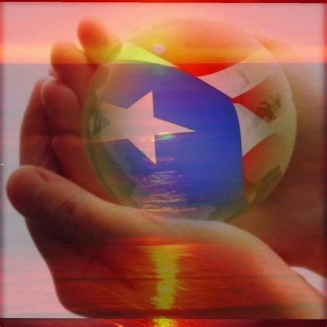 yales de puerto rico imagenes 713 best images about puerto rico flag on pinterest