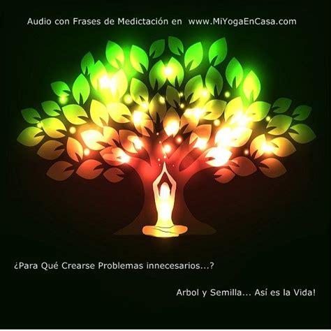 imagenes y frases de asi es la vida audio frases de meditaci 243 n 193 rbol y semilla as 237 es la vida