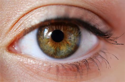 what is the most eye color what color of is the most attractive on opposite