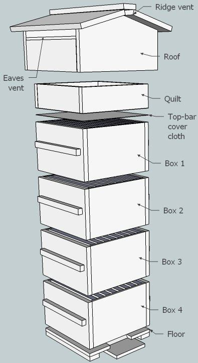 plans for a top bar beehive 10 free langstroth and warre or top bar beehive plans the self sufficient living