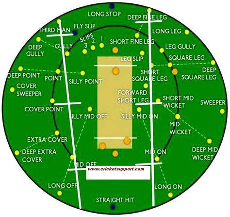 diagram of cricket field diagram of a cricket pitch diagram of a netball court