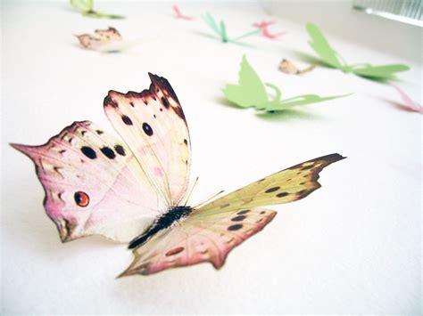 Butterfly Walldecor 40rb 3 15 3d wall butterflies3d butterfly wall decoration