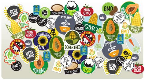 Ads American Essay Manipulate by Are Gmos Safe Yes And The Against Them Is Of