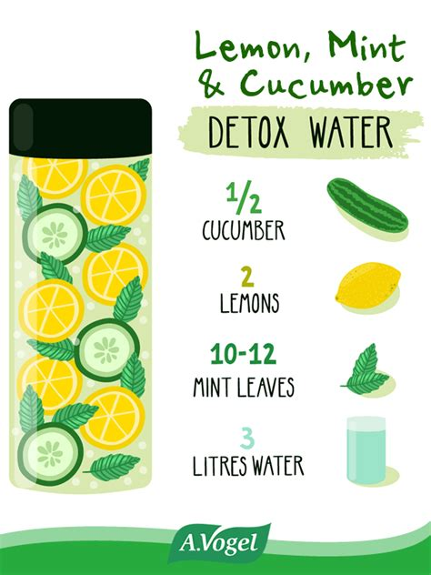 Cucumber Lemon Detox Water Recipe by Lemon Mint Cucumber Detox Water