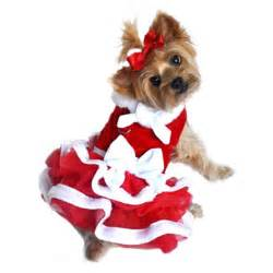 Christmas Dress For Dogs » Ideas Home Design