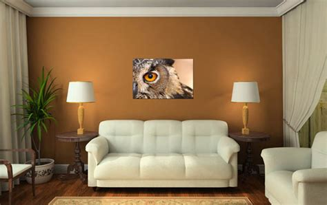 owl decor for living room owl living room decor living room