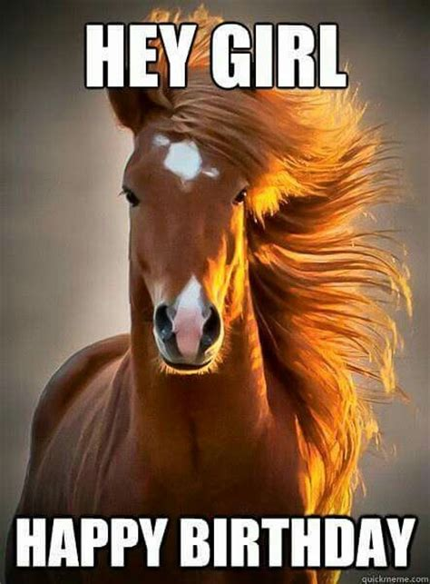 Gay Horse Meme - 102 best images about horse birthday quotes on pinterest