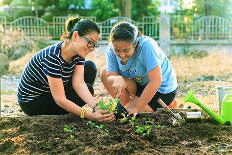 gardening celebrate urban birds