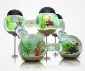 Creative fish bowl ideas images amp pictures becuo