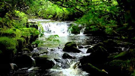 relax nature sounds 8 hours waterfalls bird songs sleep