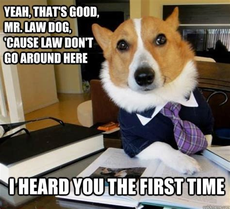 Dog Lawyer Meme - yeah that s good mr law dog cause law don t go around