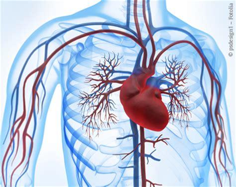 innere thrombose welche j 252 ngeren bahnbrechenden medizinischen oder