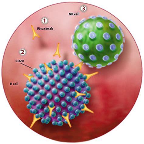 natural killer, células que matan tumores