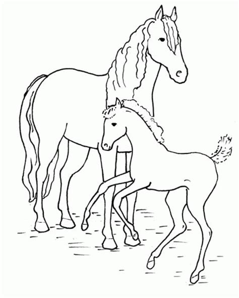 coloring pictures of a horse horse coloring pages only coloring pages