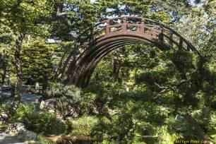 september 2013 u s japanese gardens