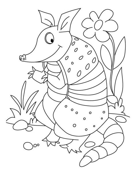 Armadillo Lizard Coloring Page   armadillo lizard colouring pages coloring home