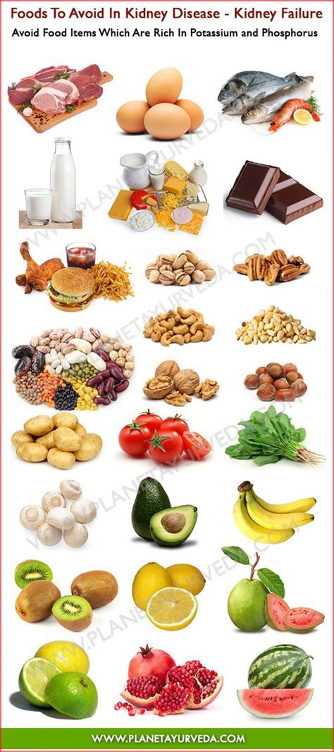 Food For Detox Kidney by 25 Best Ideas About Kidney Disease On Kidney